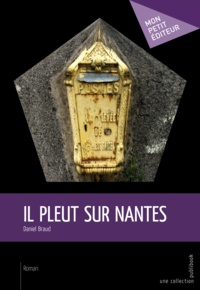 Daniel Braud - Il pleut sur Nantes.