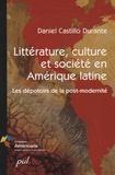 Daniel Castillo Durante - Littérature, culture et société en Amérique latine - Les dépotoirs de la post-modernité.