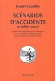 Daniel Cavaillès - Scénarios d'accidents en milieu naturel.
