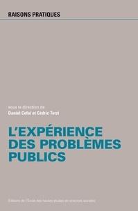 Daniel Céfaï et Cédric Terzi - L'expérience des problèmes publics.
