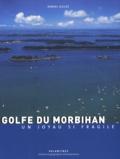 Daniel Gilles - Golfe du Morbihan - Un joyau si fragile.