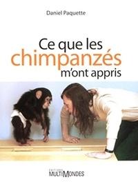 Daniel Paquette - Ce que les chimpanzés m'ont appris.