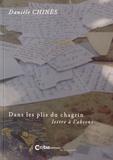 Danièle Chinès - Dans les plis du chagrin - Lettre à l'absent.
