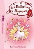Darcey Bussell - Les ballerines magiques 25 - Le trésor d'Enchantia.