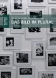 David Ganz - Das Bild im Plural - Mehrteilige Bildformen zwischen Mittelalter und Gegenwart.