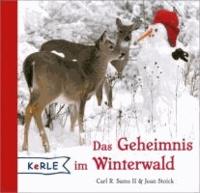 Das Geheimnis im Winterwald.