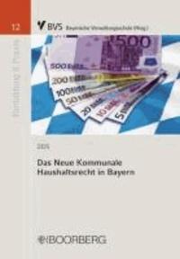 Das Neue Kommunale Haushaltsrecht in Bayern.