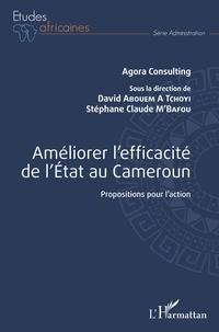 Téléchargement de livres Ipad Améliorer l'efficacité de l'Etat au Cameroun  - Propositions pour l'action  9782343183831