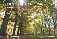 David Alfroy - La sologne.