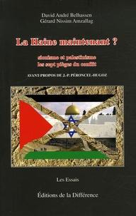 David-André Belhassen et Gérard Nissim Amzallag - La Haine maintenant ? - Sionisme et palestinisme Les 7 pièges du conflit.