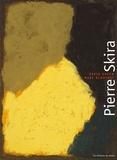David Anfam et Marc Blanchet - Pierre Skira - Pastels.