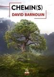 David Barnouin - Chemin(s).
