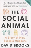 David Brooks - The Social Animal - A Story of How Success Happens.