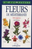 David Burnie et Derek Hall - Fleurs de Méditerranée.