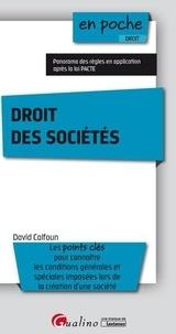Service de téléchargement de livre Droit des sociétés (Litterature Francaise) CHM