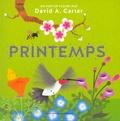 David Carter - Printemps.