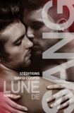 David Cooper - Lune de sang - Tome 2 | Roman gay, livre gay.