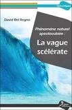David Del Regno - Phénomène naturel spectaculaire : la vague scélérate.