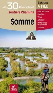 Somme- Les 30 plus beaux sentiers - David Delannoy pdf epub
