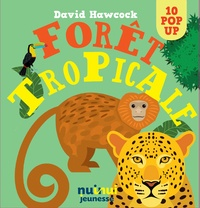 David Hawcock - Forêt tropicale.