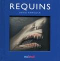 David Hawcock - Requins.
