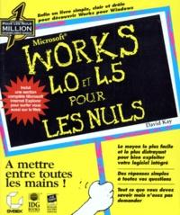 WORKS 4.0 ET 4.5 POUR LES NULS - David Kay |