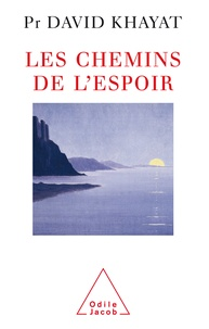 David Khayat - Les Chemins de l'espoir.