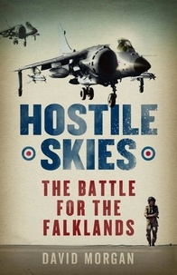 David Morgan - Hostile Skies.