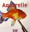 David Sanmiguel - Aquarelle - Une autre façon d'apprendre à peindre.