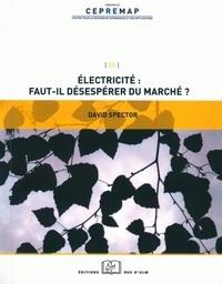 Electricité : faut-il désespérer du marché ? - David Spector |