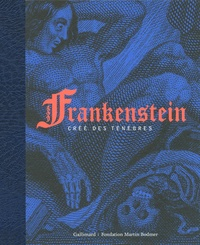 David Spurr et Nicolas Ducimetière - Frankenstein, créé des ténèbres.