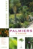 David Squire - Palmiers et cycas.