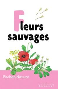 David Sutton - Fleurs sauvages.