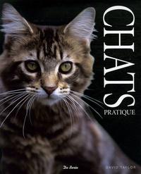 David Taylor - Les chats.