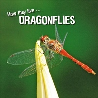 David Withrington et  Ivan Esenko - How they live... Dragonflies - Learn All There Is to Know About These Animals!.