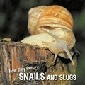 David Withrington et Ivan Esenko - How they live... Snails and Slugs - Learn All There Is to Know About These Animals!.