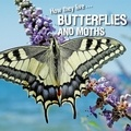 David Withrington et Ivan Esenko - How they live... Butterflies and Moths - Learn All There Is to Know About These Animals!.
