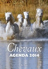 Deedr.fr Agenda 2014 Chevaux Image