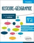Delgay - Histoire-géographie 1ere L-ES - Tout le programme en schémas.