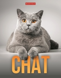Delphine Gay - Chat.