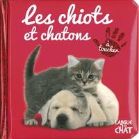 Delphine Lacharron - Les chiots et chatons.