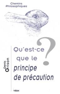 Denis Grison - Qu'est-ce que le principe de précaution ?.