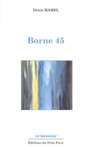 Denis Hamel - Borne 45.