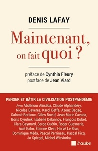 Denis Lafay - Maintenant, on fait quoi ?.