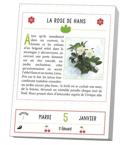 Secrets de plantes  Edition 2021