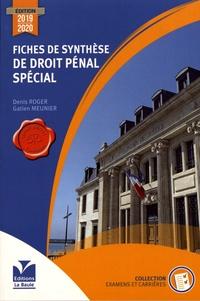Fiches de synthèse de droit pénal spécial - Denis Roger pdf epub