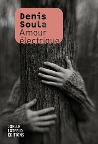 Denis Soula - Amour électrique.