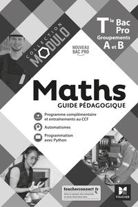Denise Laurent et Fabien Auchère - Maths Tle Bac Pro Groupements A et B Modulo - Guide pédagogique.