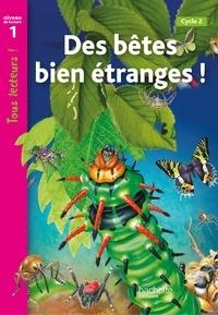 Birrascarampola.it Drôles de petites bêtes - Niveau de lecture 1 Image