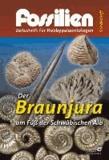 Der Braunjura am Fuß der Schwäbischen Alb.
